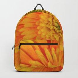 yellow and orange gerbera Backpack