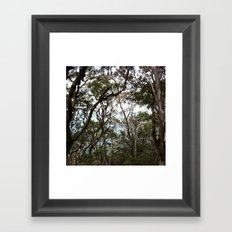 Gone Bush Framed Art Print