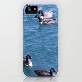 Ducks, Mallard Ducks, Lake Michigan iPhone Case