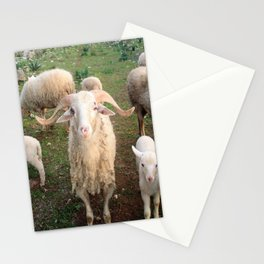 A Flock Of Sheep In A Rural Setting Stationery Cards