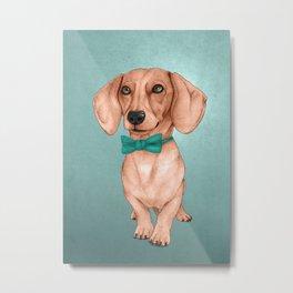 Dachshund, The Wiener Dog Metal Print