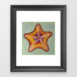 Sea Star Orange Framed Art Print