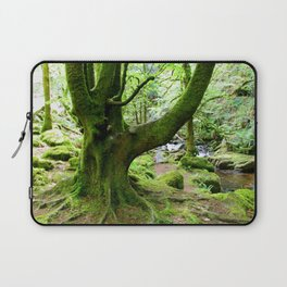 Torc Tree Laptop Sleeve