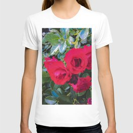 closeup red rose garden with green leaves background T-shirt