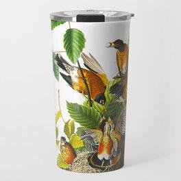 American Robin John James Audubon Vintage Scientific Illustration American Birds Travel Mug