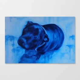 Rex Begs Canvas Print
