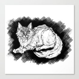 Dio the Maine Coon Canvas Print