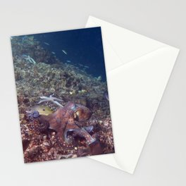 Reef Octopus Stationery Cards