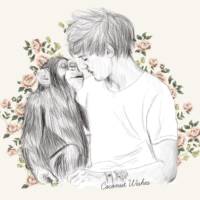 Louis and the chimp Comforters