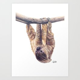 Wookie the Two-Toed Sloth Art Print