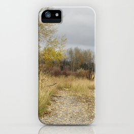 A Walk in Willow Flats - Grand Tetons iPhone Case
