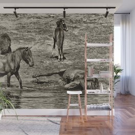 Horses taking a bath and relaxing Wall Mural