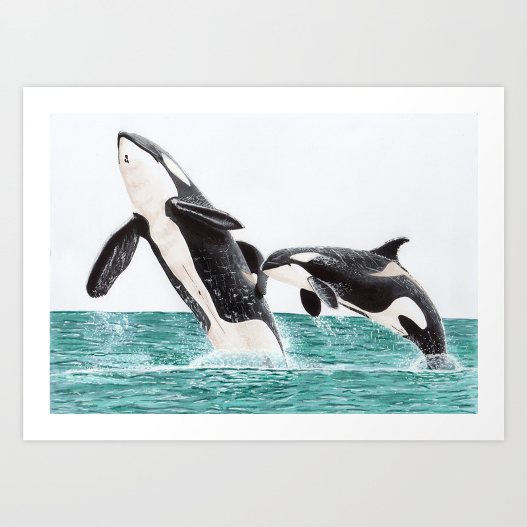 killerwhale ontario painting and whale art prints society6
