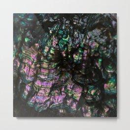 Abalone Shell 4 Metal Print