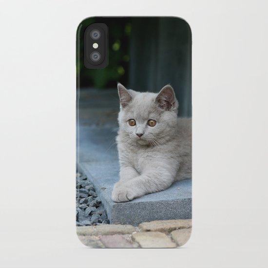 Bikkel the cat ! iPhone Case