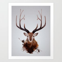 Cervus Canadensis Art Print
