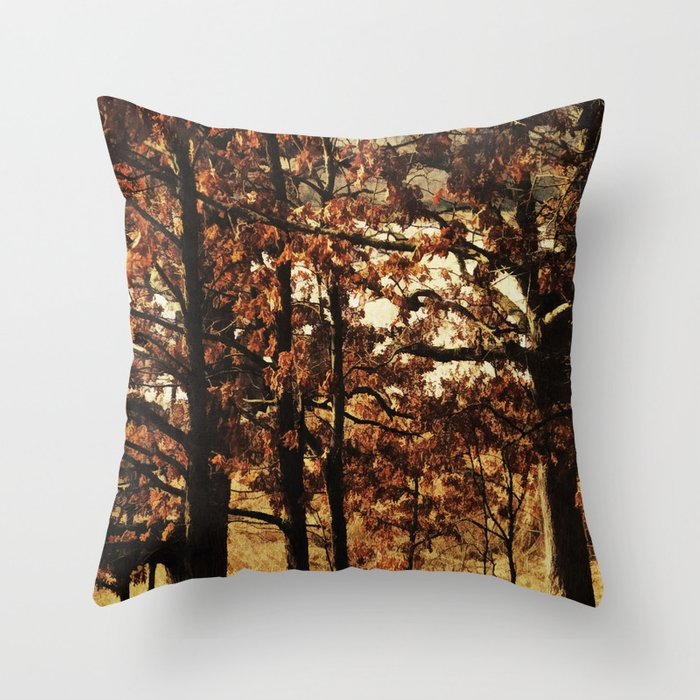 Respite on the Trail Throw Pillow