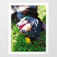 Dog Tanning Art Print