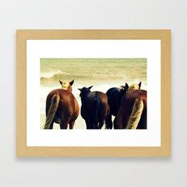 Horse Tails Framed Art Print