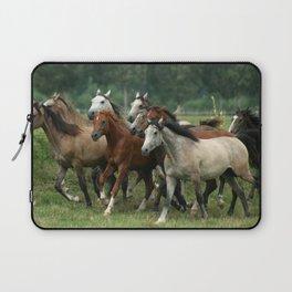 Arabian Horses Laptop Sleeve