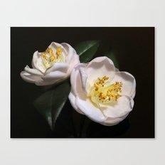Camellia Pink Canvas Print