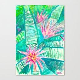 Pink Flowering Bromeliad Canvas Print