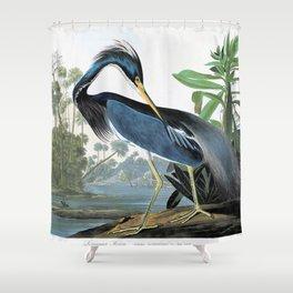 12,000pixel-500dpi - Mallard Duck - John James Audubon Shower Curtain