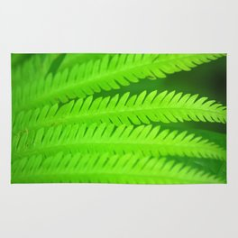 a green Fern Rug