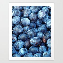 Blue Plums Fruit pattern Art Print