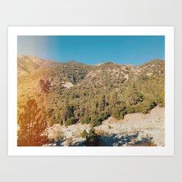 Forest Falls II Art Print