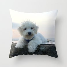 Teddy At Sunset Throw Pillow