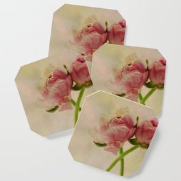Falling in Love with rose flowers Coaster