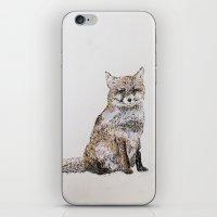 roald dahl iPhone & iPod Skins featuring Fox by Killerwinter