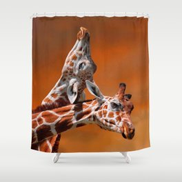 Giraffes couple in love Shower Curtain
