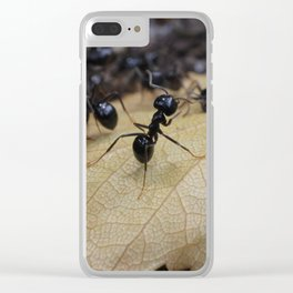 Ants Clear iPhone Case