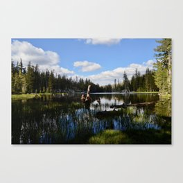 mosquito lake in vertical stripes Canvas Print
