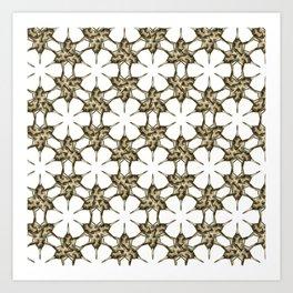 Cactus Spine Pattern - Succulent Geometric Shapes - Cactus Botanic Pattern - Sharp & Spiny Design Art Print