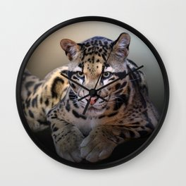 Young Leopard Wall Clock