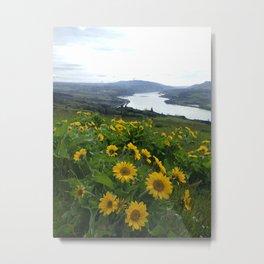 Flowers at Coyote Wall Metal Print