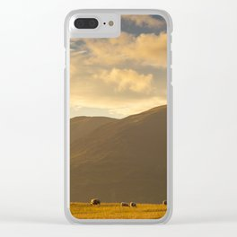 Sheep grazing in the Lake District, England Clear iPhone Case