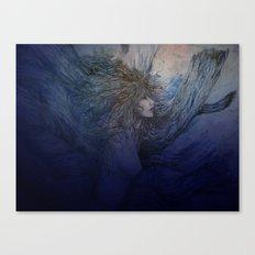 cielo Canvas Print