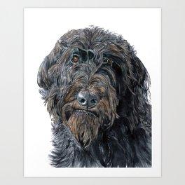 Pokey the Black Labradoodle Art Print