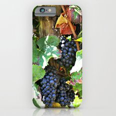 On the vine Slim Case iPhone 6s