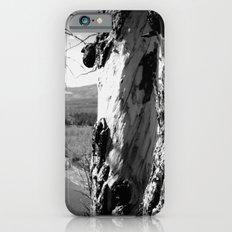 Rebirth in Yellowstone Slim Case iPhone 6s