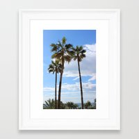 palm trees Framed Art Prints featuring Palm Trees by Rebecca Bear