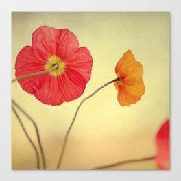 Les Jolies Fleurs Canvas Print