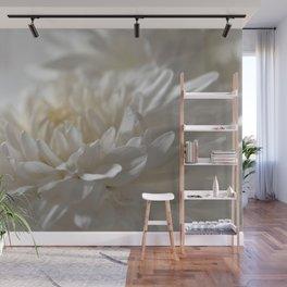 Chrysanthemum Textures Wall Mural