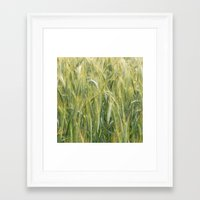 catcher in the rye Framed Art Prints featuring Rye by BlueShadowM