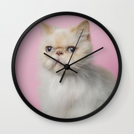 Lord Aries Cat - Photography 008 Wall Clock