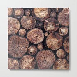 The Wood Holds Many Spirits Metal Print